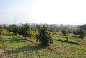 Imagen de Lugares de interes (La Huerta)